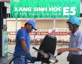 Khai tử RON 92, Bộ Công Thương dự báo 70% sẽ dùng xăng sinh học E5