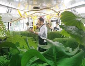 """Du khách ngạc nhiên với kiểu """"xe bus rừng xanh"""" độc đáo ở Đài Loan"""