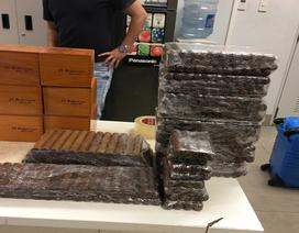 Thu giữ hơn 16.900 điếu xì gà nhập lậu bằng đường hàng không