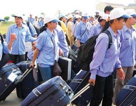 Bộ LĐ-TB&XH: Thanh tra 5 doanh nghiệp XKLĐ tại Hà Nội và Hải Phòng