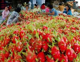 Việt Nam đang tăng xuất, giảm nhập hàng hoá từ Trung Quốc