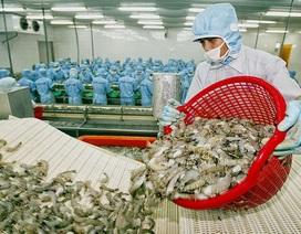 """Hàng Việt ngày càng """"đuối sức"""" ở thị trường Campuchia"""
