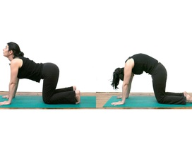 [Inforgraphics]: 5 tư thế yoga giảm khó tiêu và táo bón