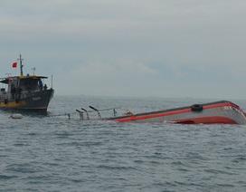 Tàu hàng đâm chìm tàu cá, bỏ mặc 15 ngư dân ôm áo phao giữa biển