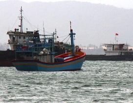 2 ngư dân mất tích, 1 người đột quỵ trên biển