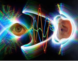 Khi mắt di chuyển, các màng nhĩ cũng làm việc
