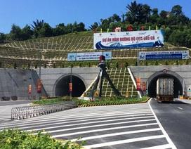 Phú Yên cho phá rừng đặc dụng để lấy đất thực hiện dự án Đèo Cả là phạm luật