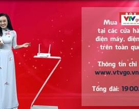 Box VTVGo: Thỏa sức xem chương trình truyền hình miễn phí