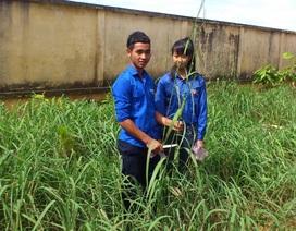 Ba thế hệ học sinh dân tộc thiểu số chế tạo sản phẩm từ cây dại trong vườn