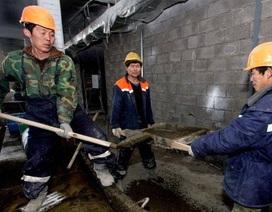 Nga sẽ trục xuất toàn bộ lao động Triều Tiên