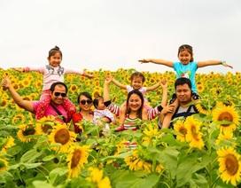 Nghệ An: Đào tạo nhân lực du lịch chưa kịp yêu cầu của thị trường lao động