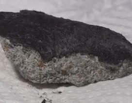 Nhật Bản: Thiên thạch 4,5 tỷ năm tuổi rơi trúng mái nhà