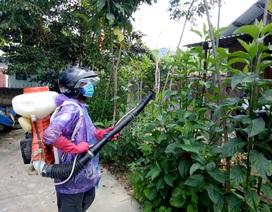 Chặn nguy cơ bùng phát dịch sốt xuất huyết ở huyện biên giới Tây Giang