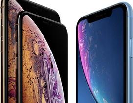 Rộ tin iPhone 2019 sẽ có 3 camera, duy trì kích thước như năm nay