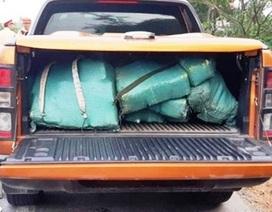 Truy nã đặc biệt kẻ vận chuyển hơn 3 tạ ma túy đá