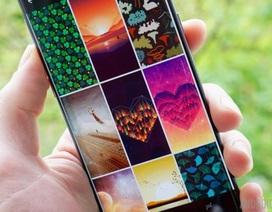 Ứng dụng hình nền chất lượng cao tuyệt đẹp dành cho smartphone do Google phát triển