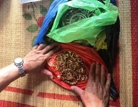 Băng trộm phá két lấy 200 cây vàng sa lưới sau 1 tháng bị truy bắt