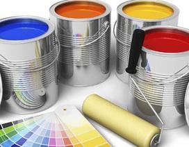 Vì sao khi mua sơn cần nắm rõ thể tích thực?