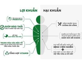 Giúp đường tiêu hóa khỏe mạnh nhờ bào tử lợi khuẩn