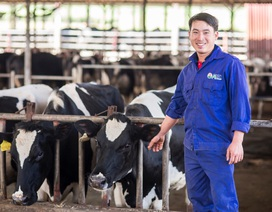 """Tự hào những thế hệ """"chuyên gia bò sữa"""""""