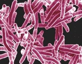 """Năm 2050, """"siêu vi khuẩn"""" kháng thuốc có thể giết 10 triệu người mỗi năm"""