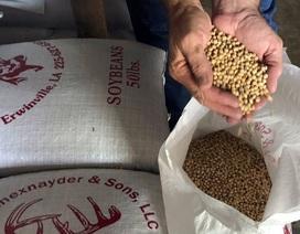 Mỹ hỗ trợ thêm 4,9 tỷ USD cho nông dân bị ảnh hưởng bởi chiến tranh thương mại