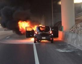 Vẫn chưa có kết luận về hàng trăm vụ cháy xe Hyundai và Kia