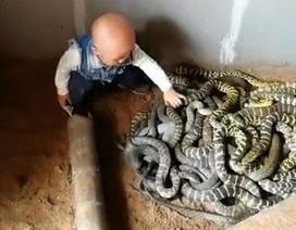 Cư dân mạng sốc với hình ảnh em bé chơi đùa cùng bầy rắn