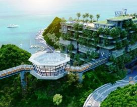 Chủ đầu tư Flamingo với tham vọng phủ xanh biệt thự trên cao tại Cát Bà