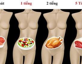 Mất bao lâu để tiêu hóa hết thực phẩm nạp vào cơ thể?