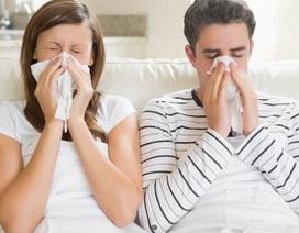 Cẩn trọng với viêm xoang, viêm mũi dị ứng thời tiết cuối thu, đầu đông