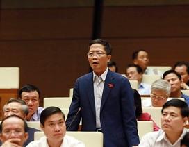 Xử lý đại dự án thua lỗ: Bộ trưởng Công Thương khẳng định không bao che với bất cứ ai