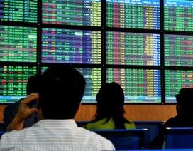 Hơn 2 triệu nhà đầu tư tham gia, công ty chứng khoán thu lợi nhuận gần 4.300 tỷ đồng