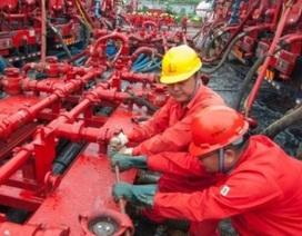 """Trung Quốc có thể bị """"gậy ông đập lưng ông"""" khi ra đòn với dầu thô Mỹ"""