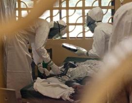 6 nguy cơ đe dọa sức khỏe toàn cầu đến từ virus, vi khuẩn