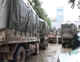 Vây bắt 11 xe ô tô tải chở 60 tấn hàng hóa nhập lậu