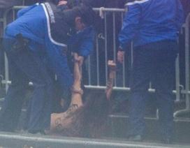 Người phụ nữ ngực trần lao vào đoàn xe Tổng thống Trump tại Pháp