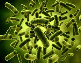 Bảo vệ hệ miễn dịch đường ruột của trẻ nhờ lợi khuẩn Bifidus BL