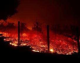 California thuê tù nhân dập cháy rừng thảm khốc nhất trong lịch sử
