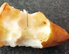 Sau dâu tây, Australia tiếp tục phát hiện kim trong quả lê