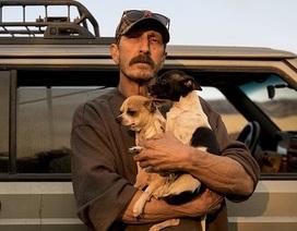 """Thoát chết khỏi """"biển lửa"""" cháy rừng ở California nhờ chạy theo cáo"""