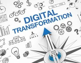 Cơ quan nhà nước và doanh nghiệp phải làm gì trong công cuộc chuyển đổi số?