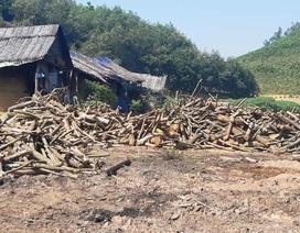 """Nhiều lò than """"thổ phỉ"""" không phép ngang nhiên hoạt động tại Nghệ An!"""