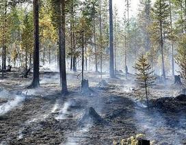 Lời cảnh báo của người 40 năm nghiên cứu biến đổi khí hậu