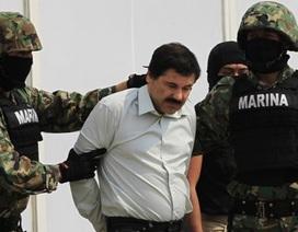 Chết thảm dưới tay trùm ma túy El Chapo vì từ chối bắt tay