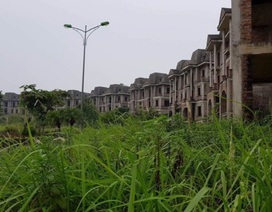 7 tỉnh thành, 1.500 dự án chậm, lãng phí 20.000 ha đất