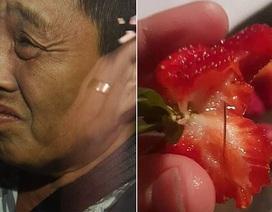 Tình tiết mới vụ nghi phạm gốc Việt nhét kim nhọn vào dâu tây ở Australia