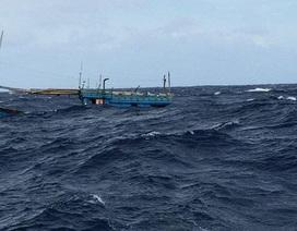 Tàu cá chạy vào bờ tránh bão bị sóng lớn đánh chìm