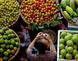 """80% nông sản Việt bán ra thế giới """"sống tầm gửi"""" bằng thương hiệu nước ngoài"""