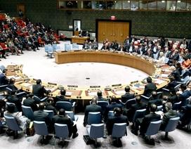 Liên Hợp Quốc bác đề xuất chương trình nghị sự của Nga về căng thẳng với Ukraine